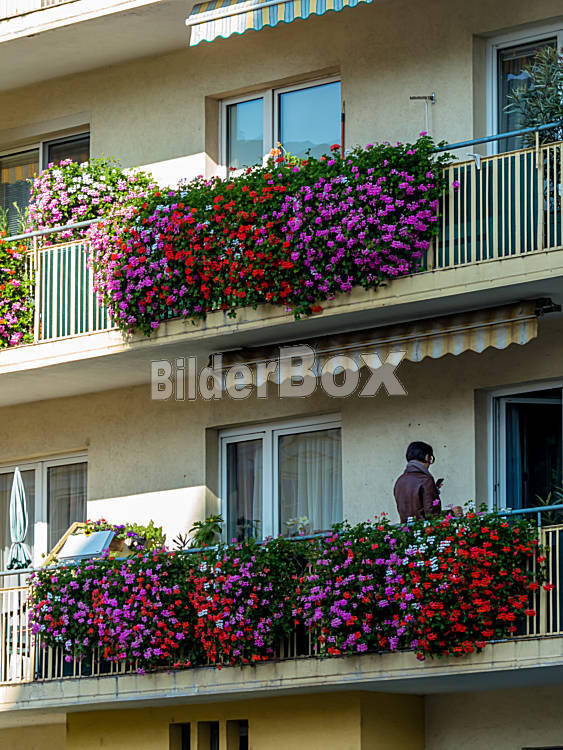 balkon mit blumen bilderbox bildagentur gmbh. Black Bedroom Furniture Sets. Home Design Ideas
